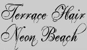 logo of Terrace Hair / Neon Beach